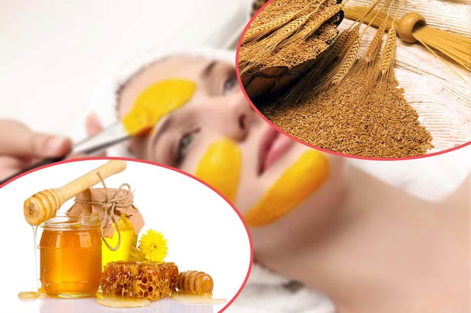 Công thức trị nám bằng mật ong và lúa mạch